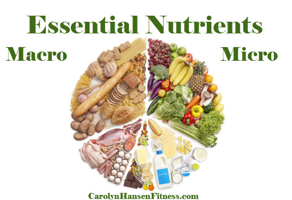 Foods High In Micronutrients