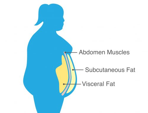 Dangerous Visceral Fat